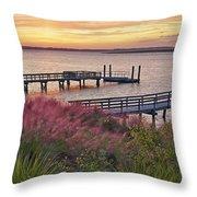Breezy Pampas Grass Throw Pillow