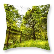 Breezy Spring Afternoon Throw Pillow