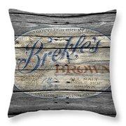 Brekles Brown Throw Pillow