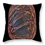 Briar Wood Pipe Throw Pillow