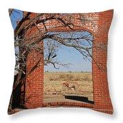 Brick Entry 1 Throw Pillow