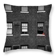 Brick Wall And Windows Throw Pillow