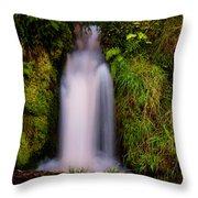 Bridal Dress. Waterfall At Benmore Botanical Garden. Nature Of Scotland Throw Pillow