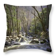 Bridalveil Falls Feeds A Marvelous Stream Throw Pillow
