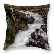 Lower Wahkeena Falls Throw Pillow
