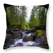 Bridge Below Rainier Throw Pillow by Chad Dutson