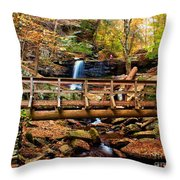 Bridge By B Reynolds Falls Throw Pillow