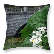 Stone Bridge Daisies Throw Pillow