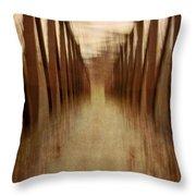 Bridge In Abstract Throw Pillow