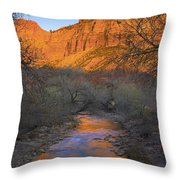 Bridge Mt And The Virgin River Zion Np Throw Pillow