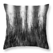 Bridge Of Lions Reflections St Augustine Florida Painted Bw   Throw Pillow