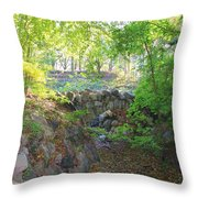 Bridge Over Abandoned Moat Throw Pillow