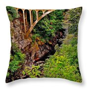 Bridge Over North Harbour River-nl Throw Pillow