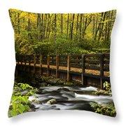 Bridge Over Oconaluftee Throw Pillow