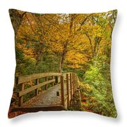 Bridge To Eden Throw Pillow