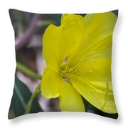 Bridges Evening Primrose Throw Pillow