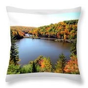 Old Bridge, New Bridge Throw Pillow