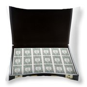 Briefcase Full Of Money Throw Pillow