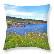 Brier Island In Digby Neck-ns Throw Pillow