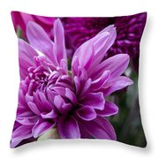 Bright And Beautiful Easter Mums Throw Pillow