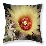 Bright And Beauty Throw Pillow