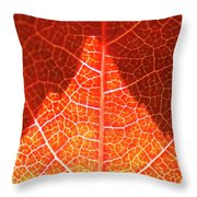 Bright And Dark Throw Pillow