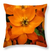 Bright And Lively Throw Pillow