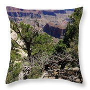 Bright Angel Point View Throw Pillow