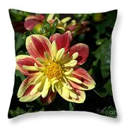 Bright Blooms Throw Pillow