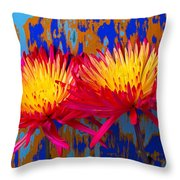 Bright Colorful Mums Throw Pillow