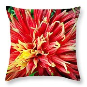 Bright Colors Throw Pillow