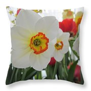 Bright Daffodils Throw Pillow