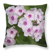Bright Eyes Squared Throw Pillow