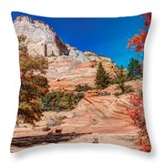 Bright Fall Colors At Zion Throw Pillow