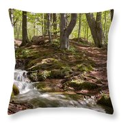 Bright Forest Creek Throw Pillow