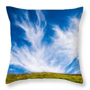 Bright Green Meadow And Deep Blue Sky Throw Pillow