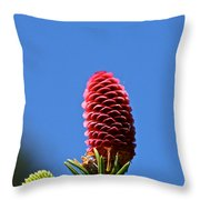 Bright Horizions Throw Pillow