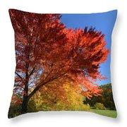 Bright Orange Of Fall Throw Pillow
