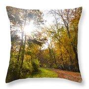 Bright Path Throw Pillow