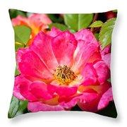 Bright Pink Rose Throw Pillow