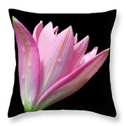 Bright Pink Trumpet Lily  Throw Pillow