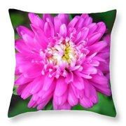 Bright Pink Zinnia Flowers Throw Pillow