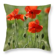Bright Poppies 2 Throw Pillow