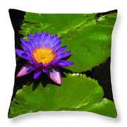 Bright Purple Water Lilly Throw Pillow
