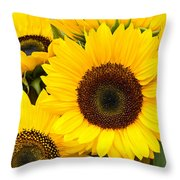 Bright Sunflower Blossoms Throw Pillow