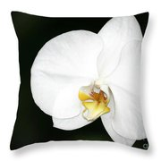 Bright White Orchid Throw Pillow
