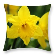Cheerful Trumpets Throw Pillow