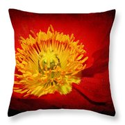 Bright Yellow Poppy Center Throw Pillow