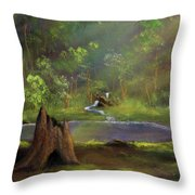 Brightening Throw Pillow