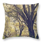 Brightening Up The Day Throw Pillow by Laurie Search